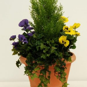 artificial cypress and pansies mixed