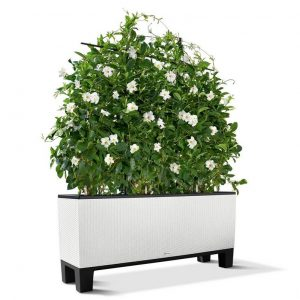 Pedestal for Planter