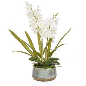 Artificial White Orchid